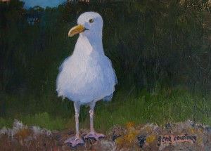 East Boothbay Gull, oil on copper, 4 x 6