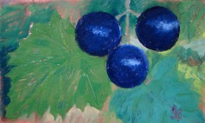 Three Muscadines oil on copper $75