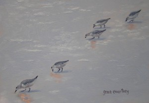 Diagonal Dunlins oil on copper, 8 x 5